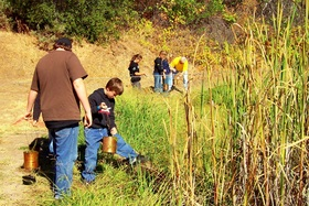 Outdoor School Science Students at the Cattails!